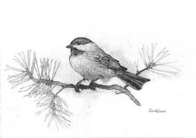 Drawing - Winter Chickadee by Cynthia  Lanka