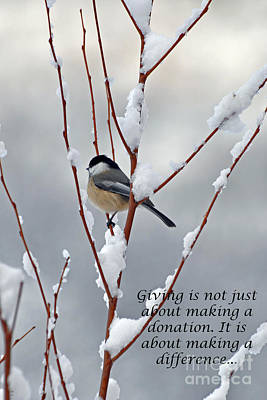 Art Print featuring the photograph Winter Chickadee Giving by Diane E Berry