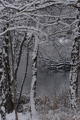 Photograph - Winter by Christopher Kirby
