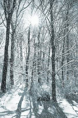 Winter Cold Art Print by JAMART Photography
