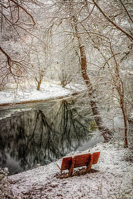 Photograph - Winter Contemplation In Hdr Detail by Debra and Dave Vanderlaan