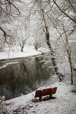 Photograph - Winter Contemplation Oil Painting by Debra and Dave Vanderlaan