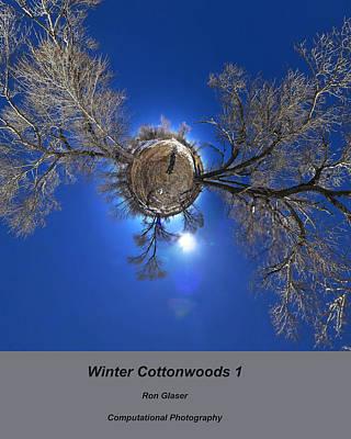 The Bunsen Burner - Winter Cottonwoods 1 by Ron Glaser