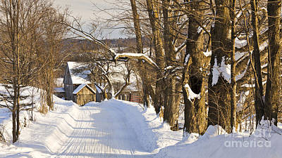 Photograph - Winter Country Road by Alan L Graham