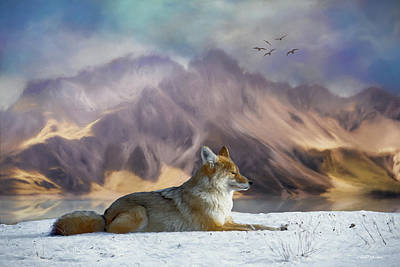 Photograph - Winter Coyote-painting by Ericamaxine Price
