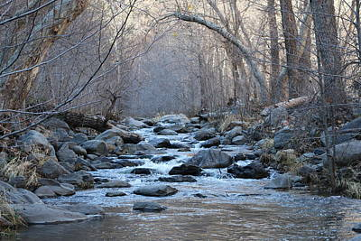 Photograph - Winter Creek  by Christy Pooschke