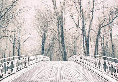 Photograph - Winter Crossing by Jessica Jenney