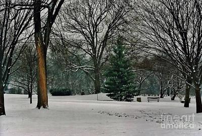 Photograph - Winter by D Hackett