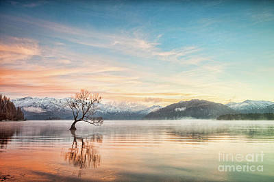 Photograph - Winter Dawn, Lake Wanaka Otago Nz 2 by Colin and Linda McKie
