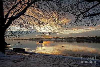 Photograph - Winter Day by Butch Lombardi