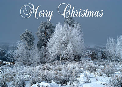 Photograph - Winter Day Christmas Card by R