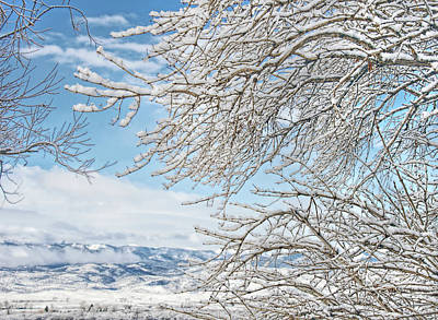 Photograph - Winter Day Montana by Jennie Marie Schell
