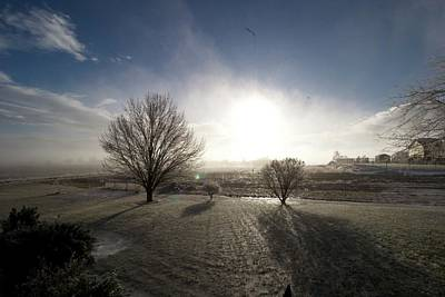 Photograph - Winter Day by Patrick Craig