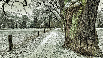 Photograph - Winter Day by Pixabay
