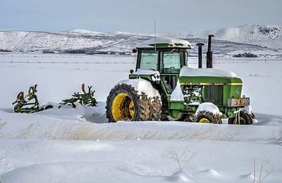 Winter Deere Art Print by Michael Morse