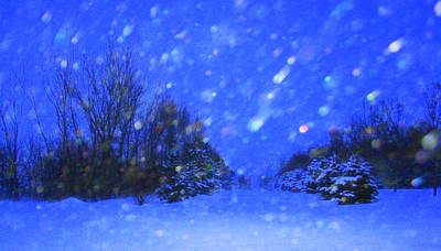 Winter Diamonds Art Print by Julie Lueders