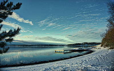 Photograph - Winter Dock by Richard Stephen