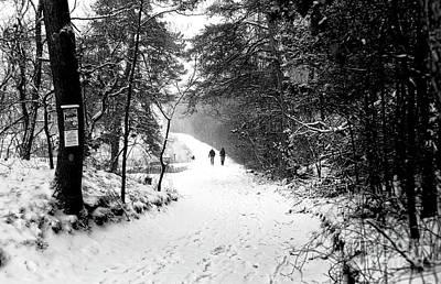 Photograph - Winter Dog Walk by John Rizzuto