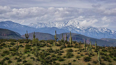 Photograph - Winter Done Arizona Style  by Saija Lehtonen