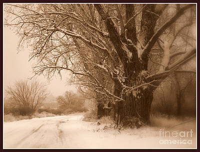 Snowy Roads Photograph - Winter Dream With Framing by Carol Groenen