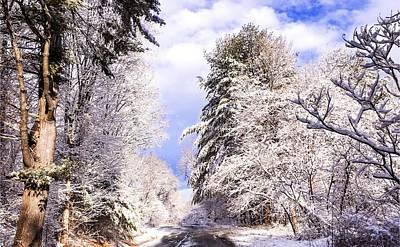 Photograph - Winter Drive by Sven Kielhorn