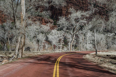 Photograph - Winter Drive Through Zion Canyon by Greg Nyquist
