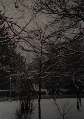 Photograph - Winter Dusk by Rob Hans