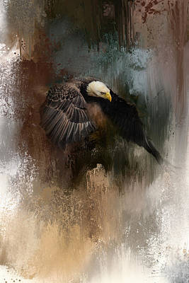 Eagle In Flight Photograph - Winter Eagle 2 by Jai Johnson