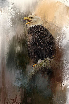 Photograph - Winter Eagle 3 by Jai Johnson