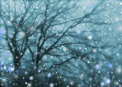 Digital Art - Winter Evening Snowfall by Mary Wolf