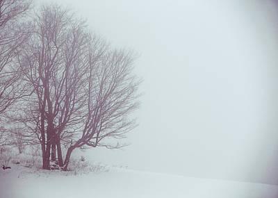 Photograph - Winter Evening by Tim Kirchoff