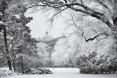 Photograph - Winter Fairytale In Brno. Black And White by Jenny Rainbow