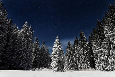 Night Photograph - Winter Fairytale by Paul Itkin