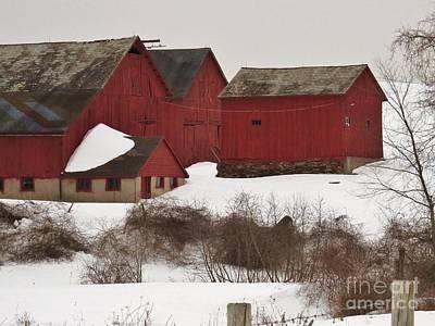 Red Barn In Winter Photograph - Winter Farm by Tom Cruickshanks