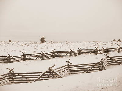 Photograph - Winter Fence In Oregon by Carol Groenen
