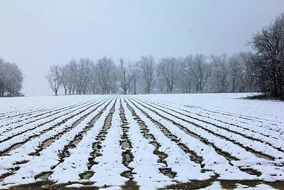 Photograph - Winter Field by Karen Wagner