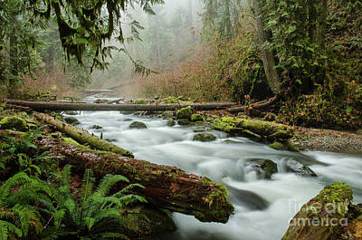 Photograph - Winter Flow by Nick Boren