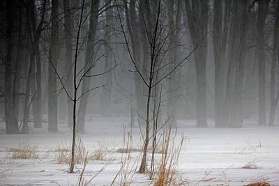 Photograph - Winter Fog by Debbie Oppermann