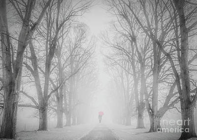 Photograph - Winter Fog by Jim Hatch