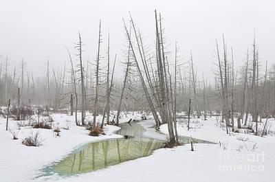 Photograph - Winter Fog by Karin Pinkham