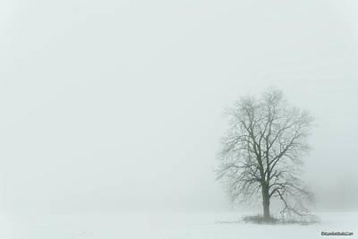 Photograph - Winter Fog by LeeAnn McLaneGoetz McLaneGoetzStudioLLCcom