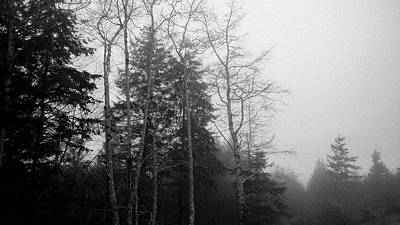 Photograph - Winter Fog by Pacific Northwest Imagery