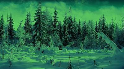 Photograph - Winter Forest Dream At Dusk by David Dehner