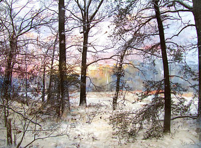 Photograph - Winter Forest by John Rivera