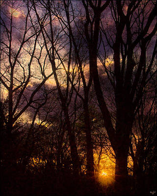 Photograph - Winter Forest Sunrise by Chris Lord