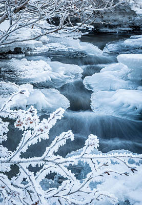 Photograph - Winter Frost by Tim Newton