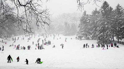 Photograph - Winter Fun On Cedar Hill by Cornelis Verwaal