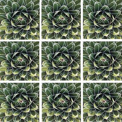 Winter Garden All In Green Art Print