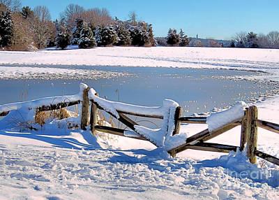 Photograph - Winter Gate by Janice Drew