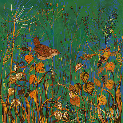 Winter Glimpses - Wren And Physalis Art Print by Lotti Brown